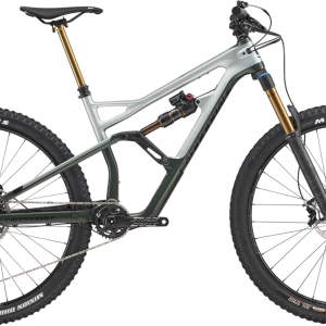 cannondale_jekyll_29_1_sage_gray_2019_dahlmans_01